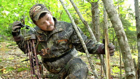 Why Many American Suburbs Welcome Urban Deer Hunters
