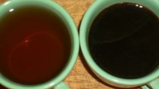 Use Diluted Coffee to Fertilize Plants