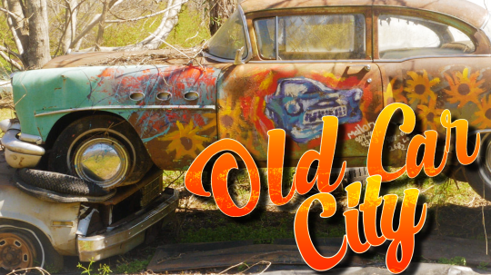 Old Car City: The Junkyard Turned Photographer's Paradise
