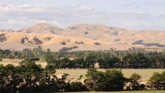 Ultimate Guide to the Wairarapa Wine Region