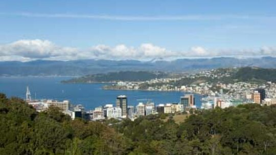 Ultimate Guide to the Wellington Wine Region