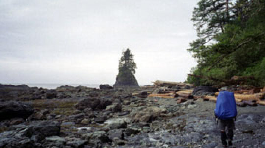 A Guide to Hiking the West Coast Trail