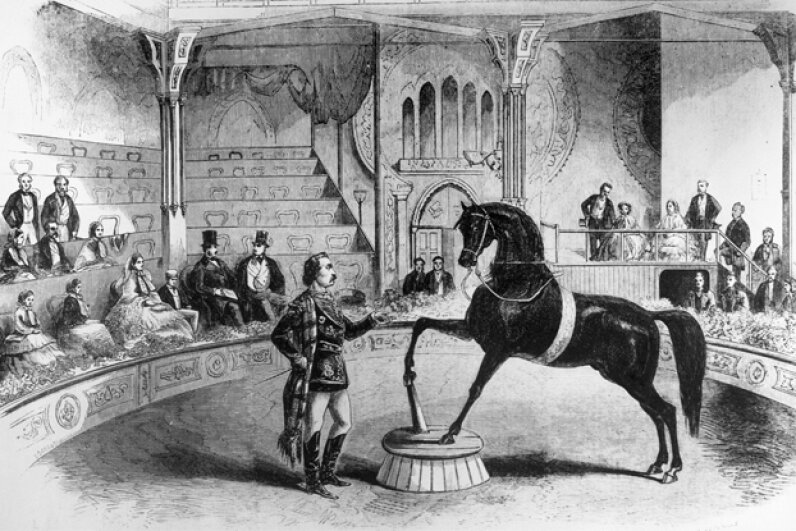 Queen Victoria enjoyed watched horses like Black Eagle perform the waltz, the polka, imitate camels and stand erect on their hind legs. Three Lions/Stringer