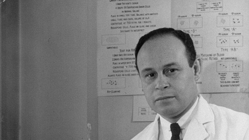 Dr. Charles Drew