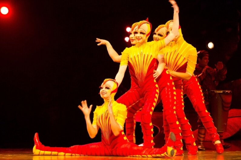 Acrobats from Cirque Du Soleil perform in the show 'OVO' at Carpa Santa Fe on October 29, 2011 in Mexico City, Mexico