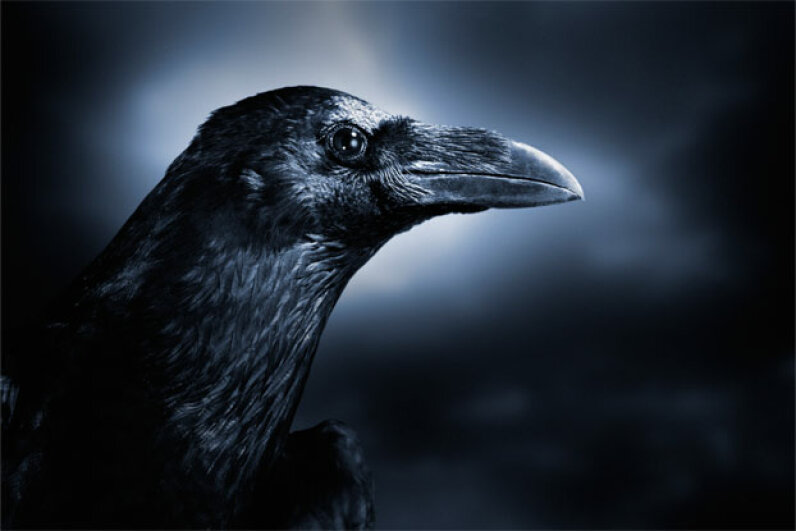 You don't want that crow remembering your face. Digital Zoo/Digital Vision/Getty Images