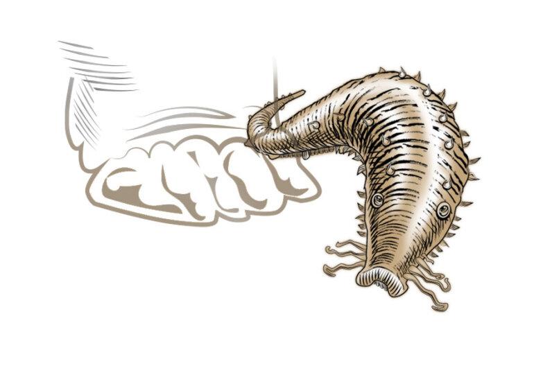 That's one really tough slug. © HowStuffWorks 2016