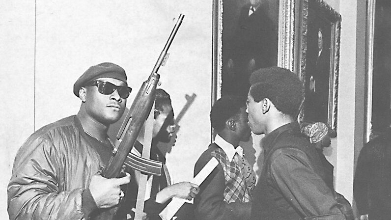 Black Panthers, guns