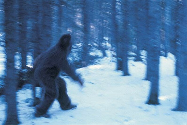 Ever notice that all the photos of Bigfoot are blurry? Grambo Grambo/Getty Images
