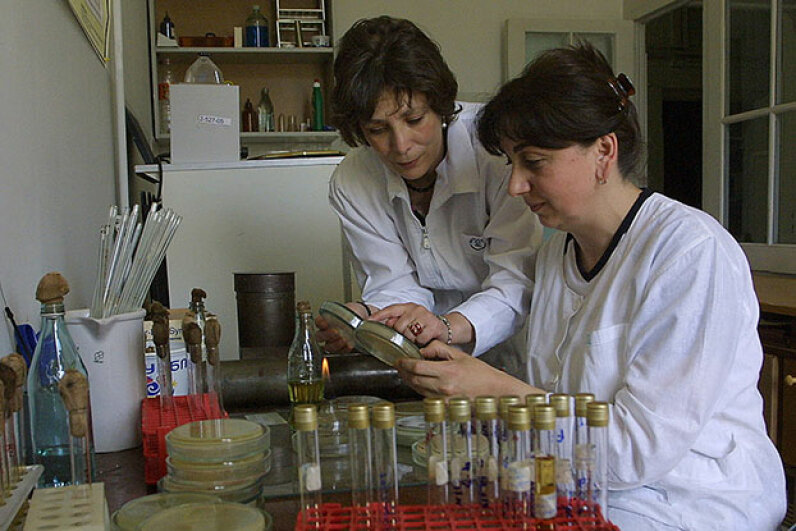 Georgian doctors Nina Chanishvili (L) and Ketino Porchidze work in the laboratory of the Eliava Institute of Bacteriophage, Microbiology and Virology in 2005. Bacteriophage therapy was very popular in Russia and Eastern Europe. VANO SHLAMOV/AFP/Getty Images