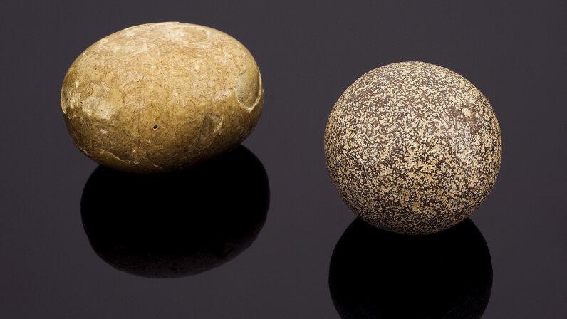 bezoar stones, medicine