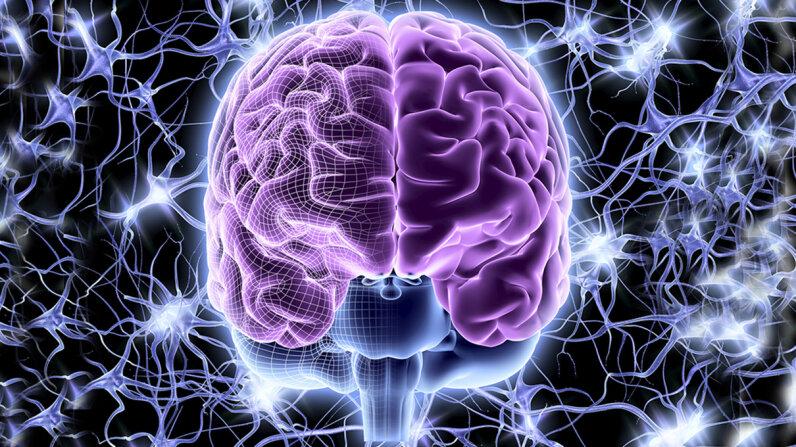 bicameral mind