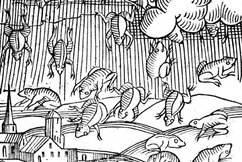 This illustration depicts a rain of frogs recorded in 1355. © Oxford Science Archive/Print Collector/Getty Images