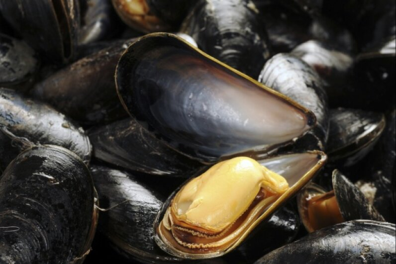 Mussels: They're tasty and handy for earthquake-proofing. iStock/Thinkstock