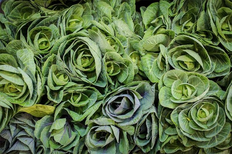 Cabbage juice is great for people battling ulcers. Bkbook/iStock/Thinkstock