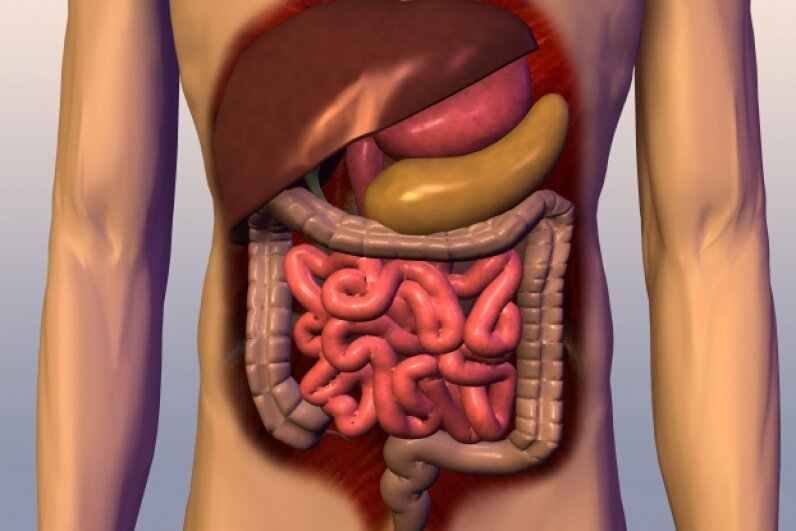 The digestive tract usually gets all the credit for gross contents. While there's plenty of unpleasantness here, your body is a wonderland of repellent things.  ©Purestock/Thinkstock
