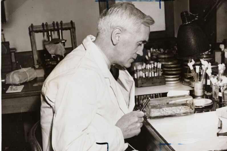 Dr. Alexander Fleming, discoverer of penicillin, at work in his laboratory in 1943. Daily Herald Archive/SSPL/Getty Images