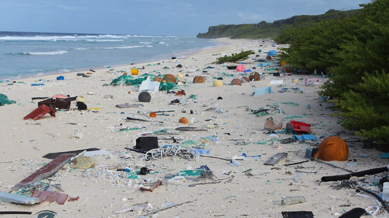 Henderson Island is thousands of miles from the nearest large city, but its beaches are littered with human refuse.  Jennifer Lavers/University of Tasmania