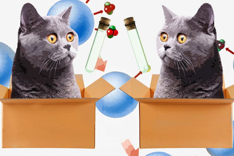 In a multiverse, you don't have to worry that you're going to kill a metaphorical cat with your curiosity. Korionov/Designs Stock/Chaiwat Photos/Thinkstock/HowStuffWorks