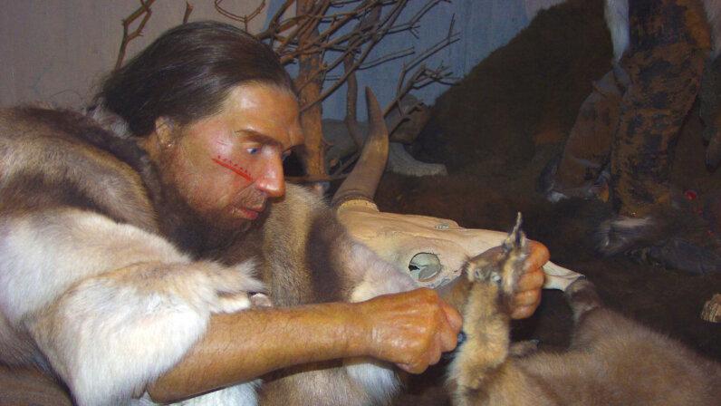 neanderthal, laugh