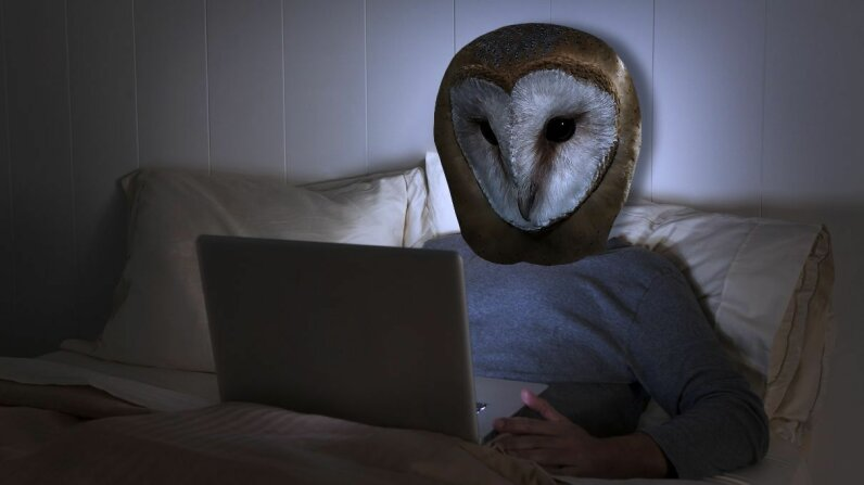 It can be incredibly frustrating to be perennially awake when the world is asleep. For some chronically sleep-troubled folks, the problem may lie in their genes, specifically the CRY1 gene. Sam Diephuls/Mario Cea Sanchez/Getty