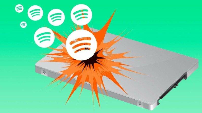Spotify bug illustration