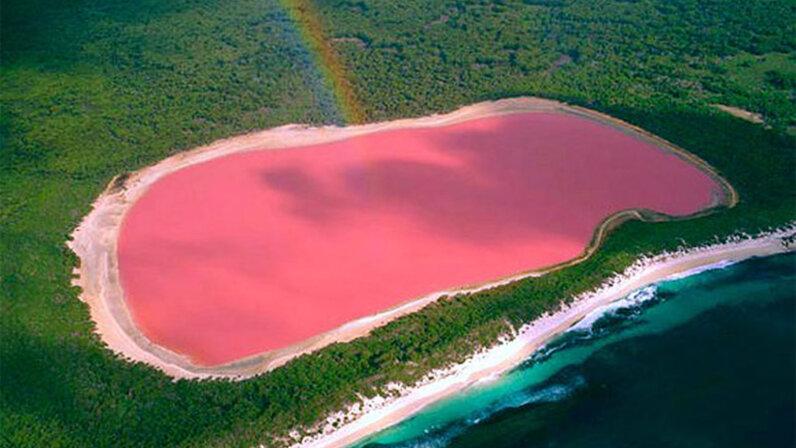 Pink lake, Australia