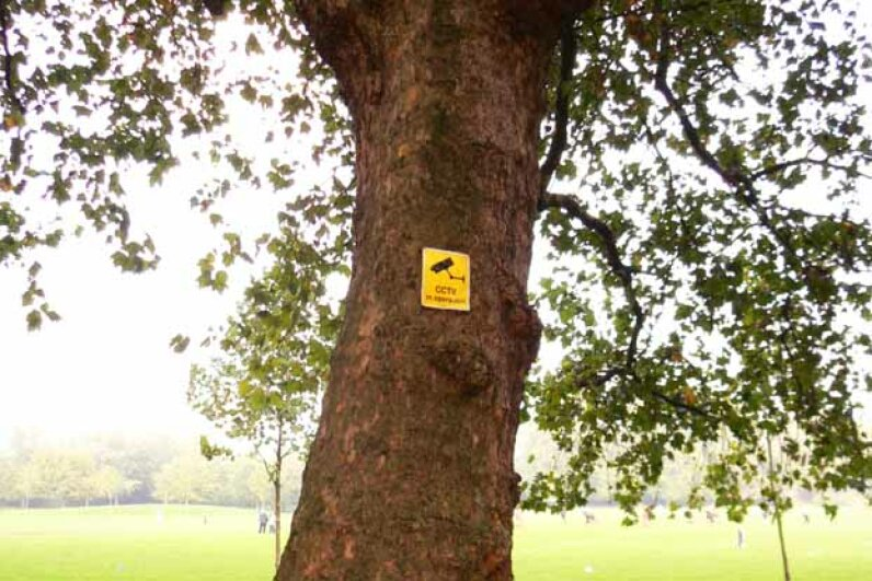 This tree in a park has a note on it warning of a security camera. Max Nathan/Flickr/Getty Images