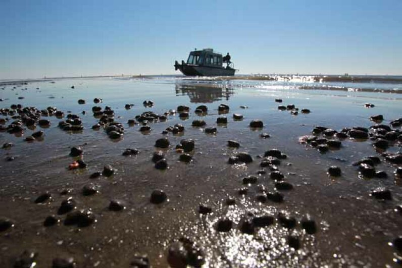 Balls of sand held together by a thin coating of oil on East Grand Terre Island, La., in the aftermath of the BP oil spill. Suzanne Kreiter/The Boston Globe via Getty Images