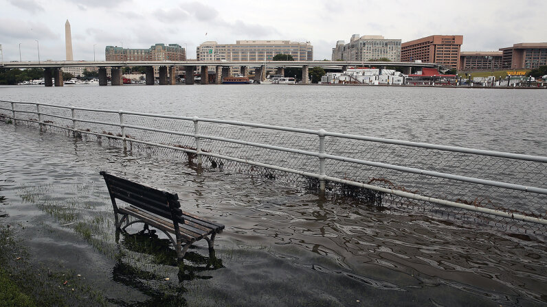 Not even Washington, D.C. is off limits to rising sea levels. Here a park bench sits in the waters of the Washington Channel during high tide in September 2016. Mark Wilson/Getty Images