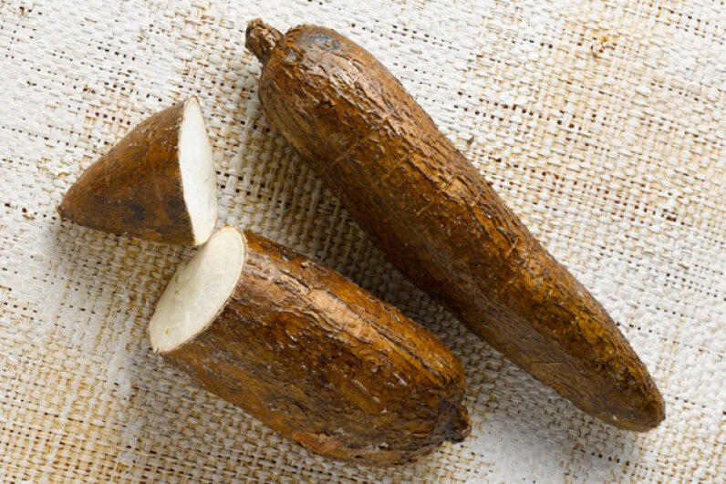 Cassava is known by many names, including manioc, yuca and arrowroot. © Asset/photocuisine/Corbis