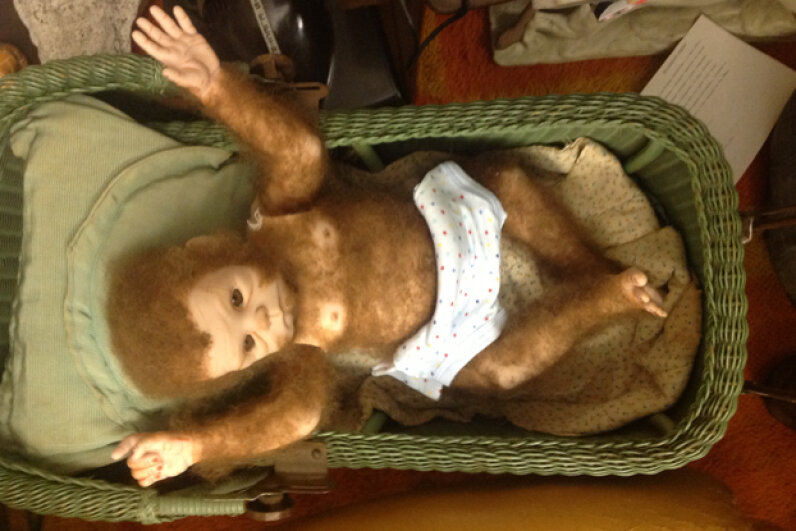 Esau, the baby Bigfoot, can be seen at the International Cryptozoology Museum. International Cryptozoology Museum