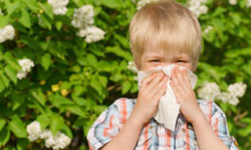 あなたのアレルギーのための10の最悪の植物