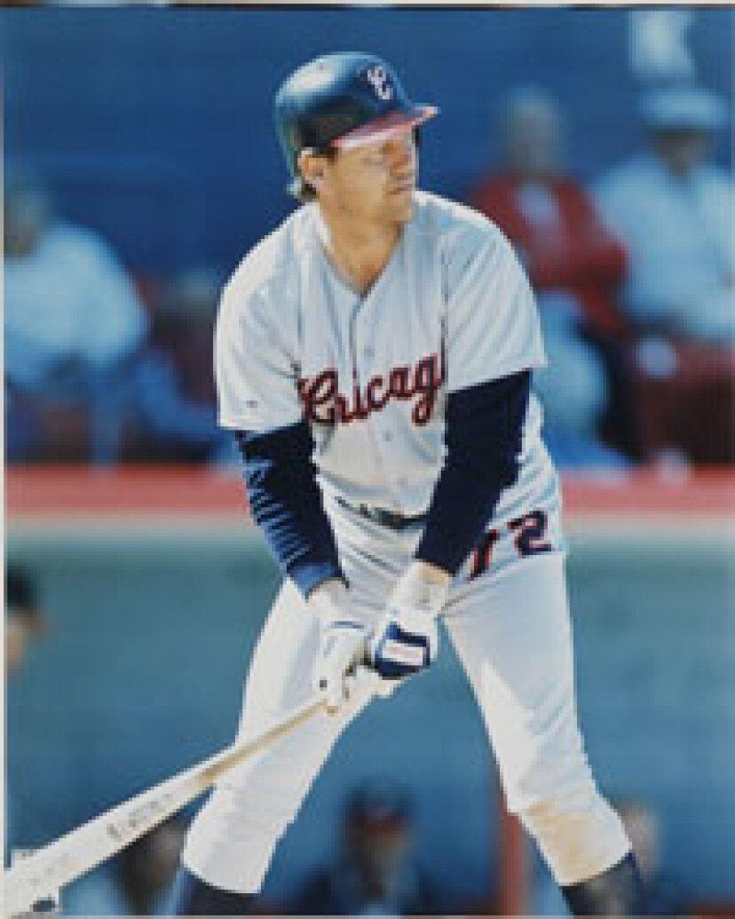 1985年の野球シーズン