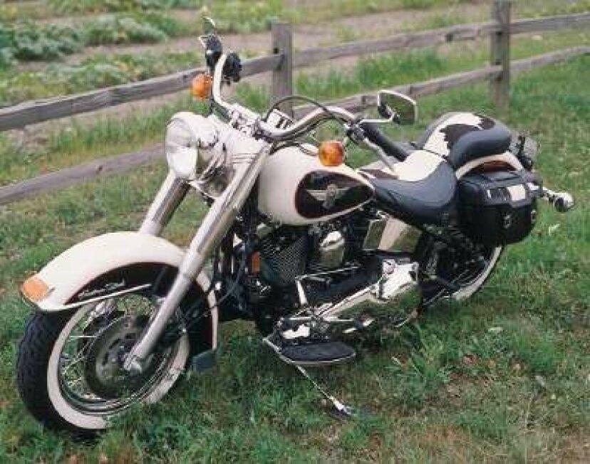 1993年ハーレーダビッドソンFLSTNヘリテージソフテイル