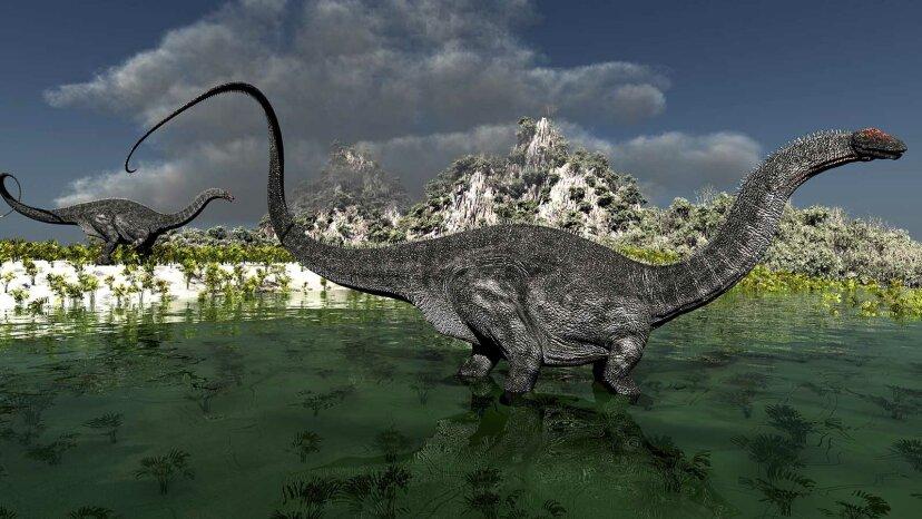 大きな恐竜の議論:それはアパトサウルスですか、それともブロントサウルスですか?