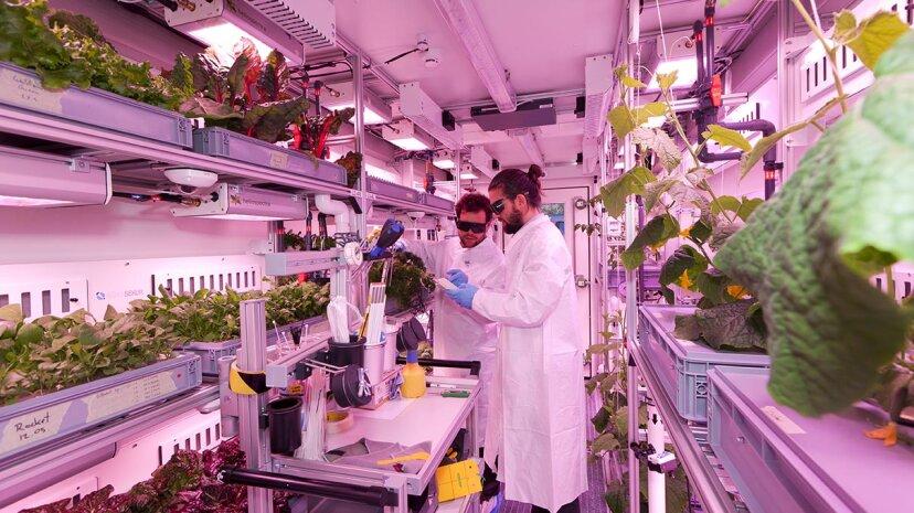 The Future Exploration Greenhouse