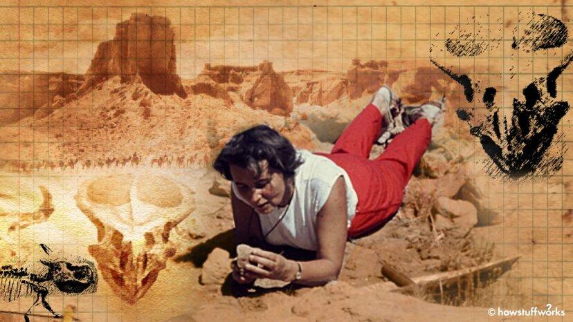 Sie ist die berühmteste Paläobiologin, die Sie vielleicht nicht kennen