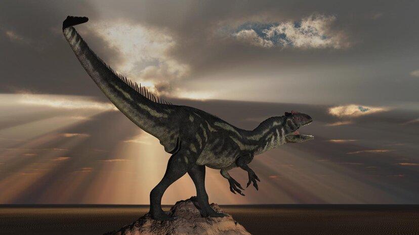アロサウルスは大規模な「肉の放牧者」であり、人食いの可能性がありました