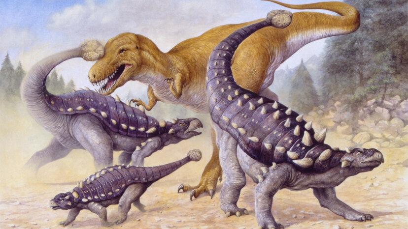 アンキロサウルス:キラークラブの尾を持つタンクのような草食動物
