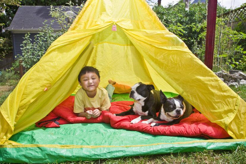 裏庭でキャンプするための5つのアイデア