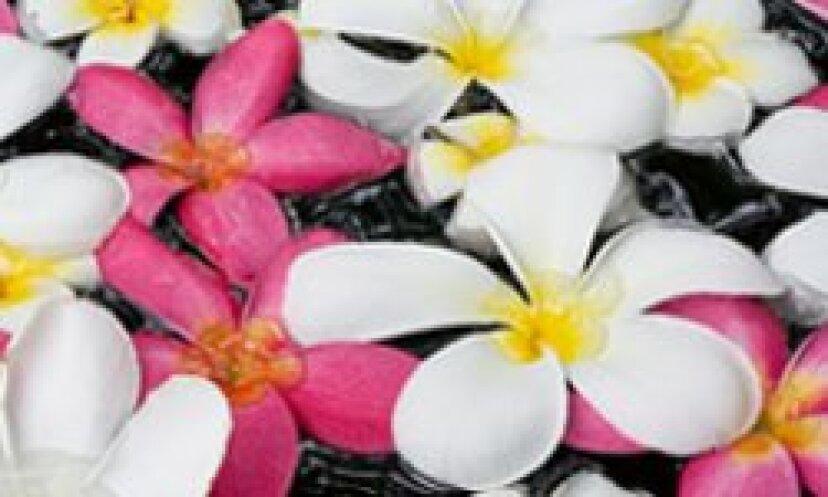 10ベスト臭い花