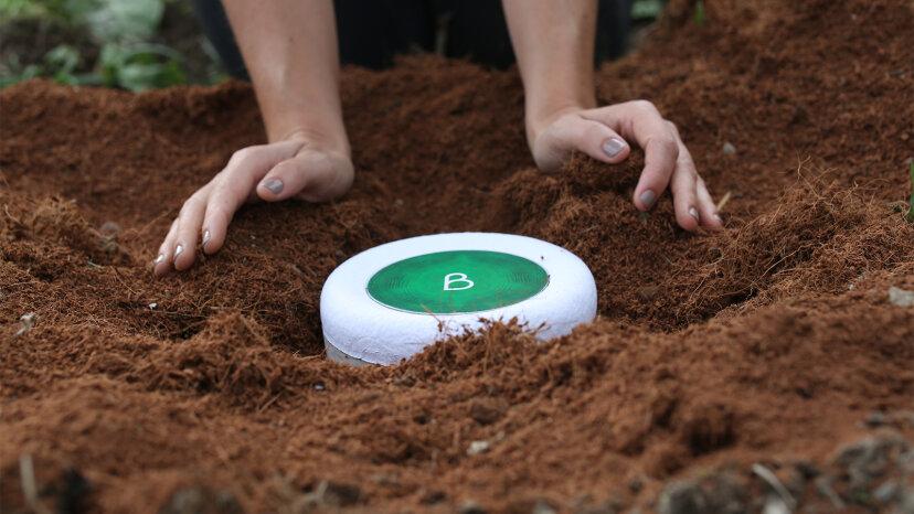 Bio-urn
