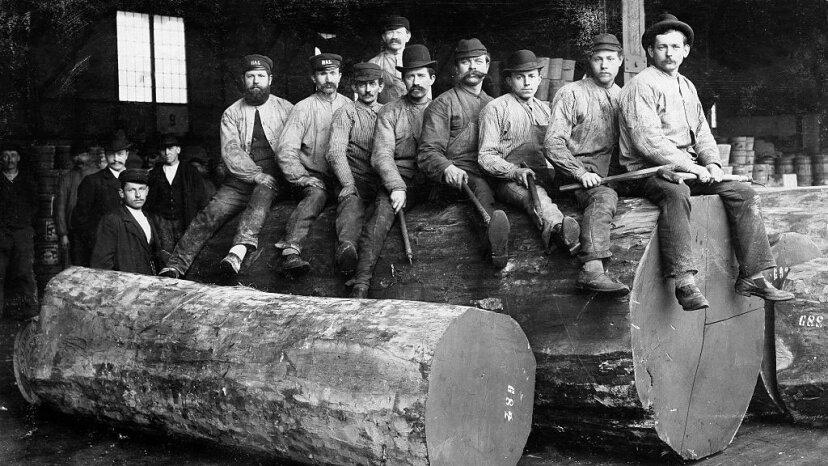 miners, 1880