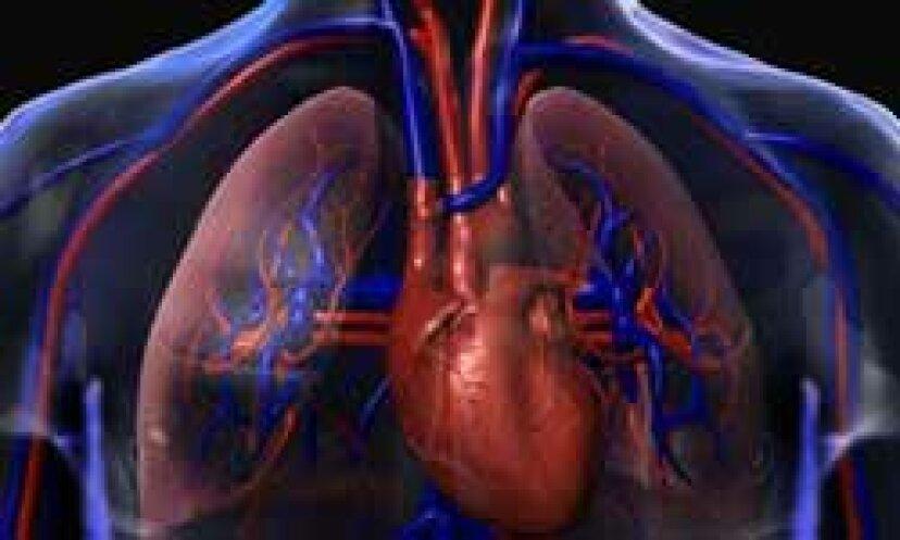 超音波は肺の体液を検出するのに役立ちますか?