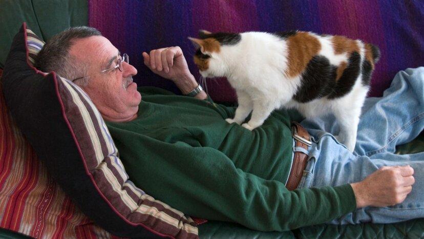 なぜ猫はこねる必要があるのですか?