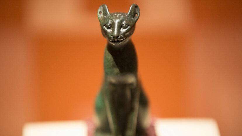 古代エジプト人は猫が「神のエネルギー」を持っていたと信じていました