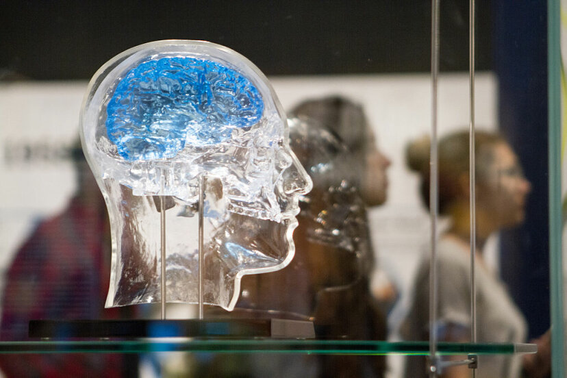 A glass head holds a neural interface sensor developed by DARPA, which reads signals from the brain and stimulates neurons to combat memory loss. DARPA is investing in chemical sensing research. Stacey Rupolo/Chicago Tribune/TNS via Getty Images