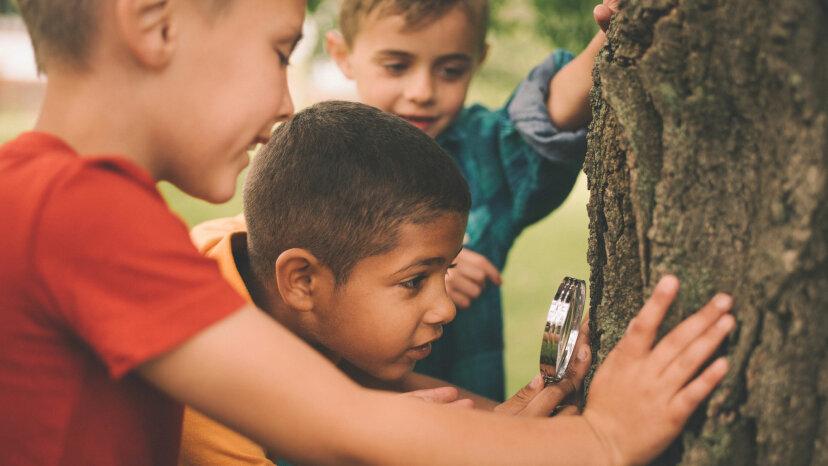 Stand by Me: Tener amigos de la infancia genera beneficios para la salud de los hombres