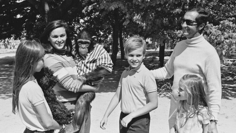 5 Schimpansen, die in menschlichen Familien aufgewachsen sind